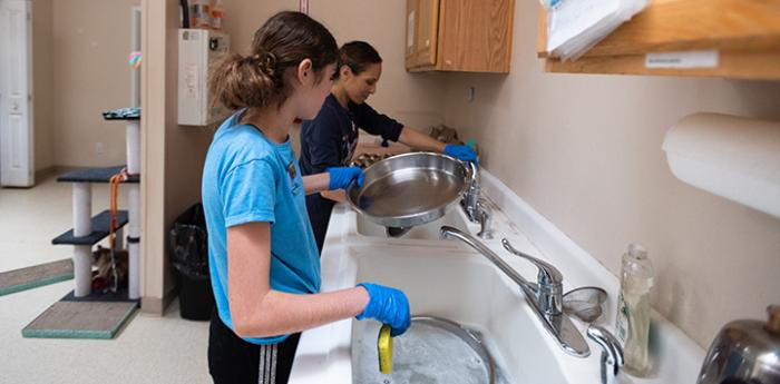 Two people washing dishes at Cat World