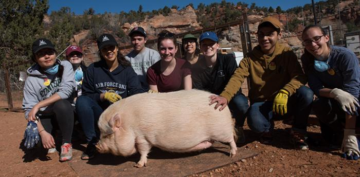 Concord Academy students volunteering at Piggy Paradise