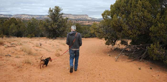 Man and dog hiking on a sand trail with trees around them
