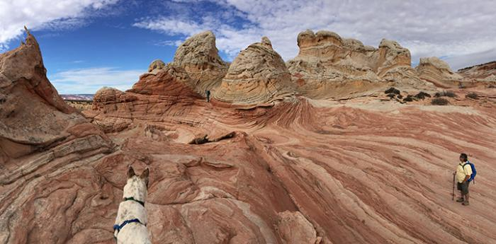 Person and a dog hiking on a red rock formation