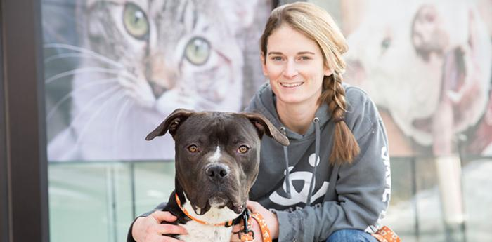 Hoss the pit bull terrier with Kate at the Salt Lake City Pet Adoption Center