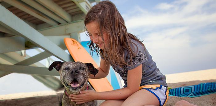Kid with smiling pit bull type dog out on a beach with surfboards behind them