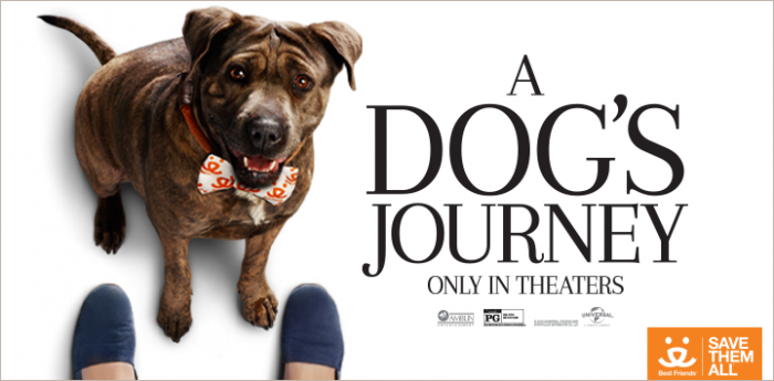 "Dog wearing a Best Friends bow tie promotion for ""A Dog's Journey"" movie"