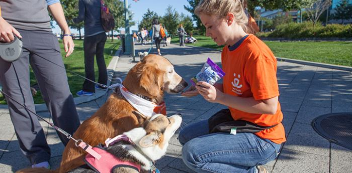 A Strut Your Mutt volunteer meets a dog participating in the fundraising walk