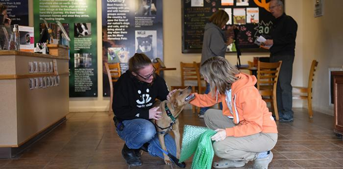 Two women interacting with a dog at the Best Friends Welcome Center