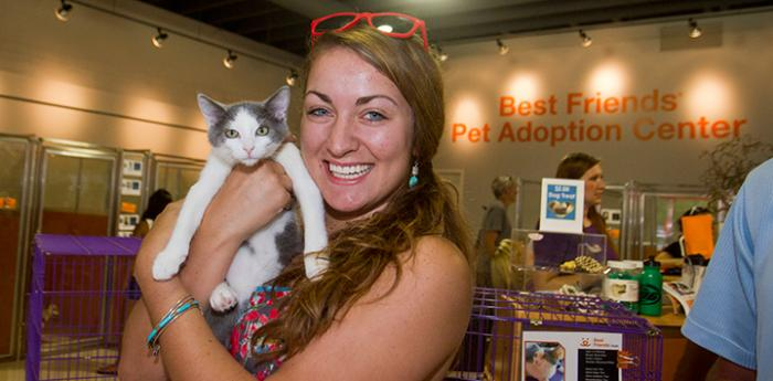 Gray kitten is adopted from Best Friends Pet Adoption Center in SLC: one step closer to no-kill.