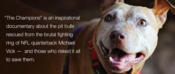 The Champions is an inspirations film about the pit bull seized from Michael Vick's property.