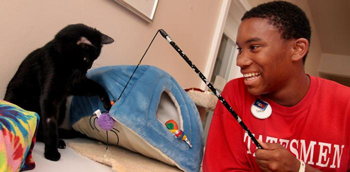 Volunteer playing with a black cat at Best Friends Cat World