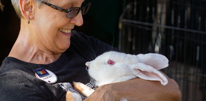 Volunteer holding a white rabbit at Bunny House
