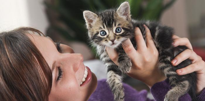 Smiling woman holding a tabby kitten