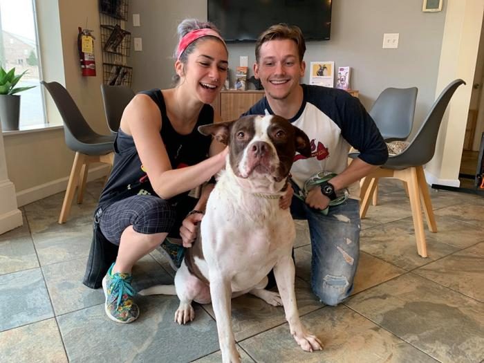 family with a new dog