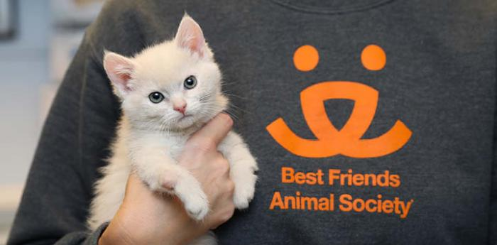 Be a hero to a homeless pet by fostering an animal for Best Friends Animal Sanctuary in Kanab, Utah