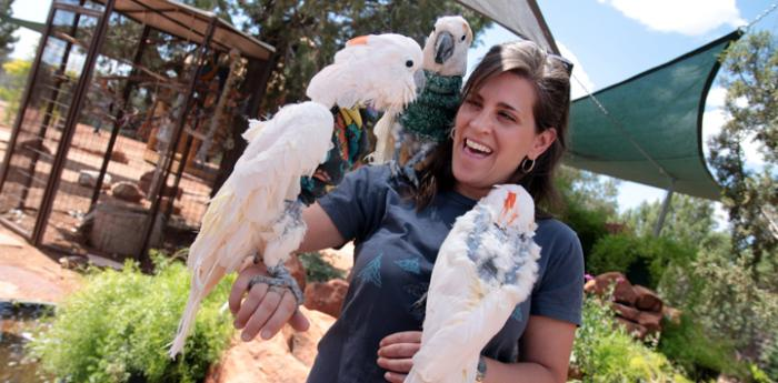 Woman holding two cockatoos