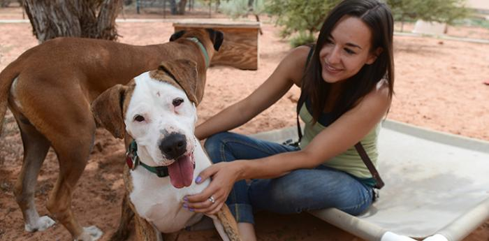 A Best Friends intern works with dogs. She is completing an animal care internship.