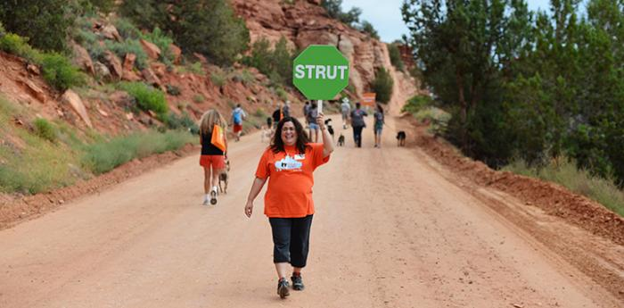 Strut Your Mutt event volunteers on the road at Best Friends Animal Sanctuary where the fundraising walk takes place.