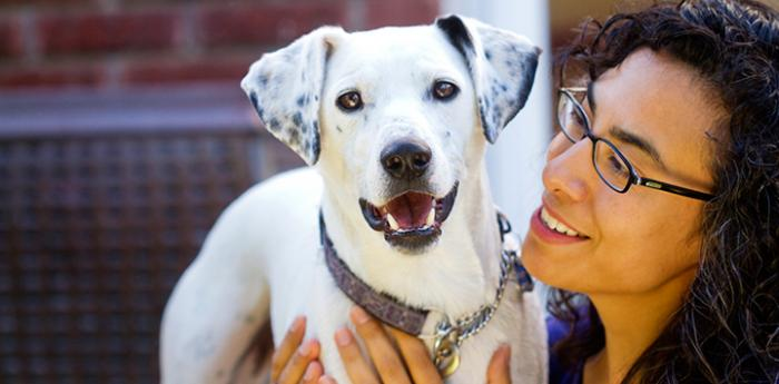White dog with spotted ears. Spay and neuter is key to controlling the pet population.