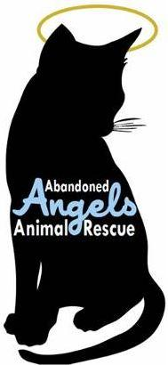 Abandoned Angels Animal Rescue logo of a cat with a halo