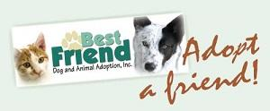 Best Friend Dog and Animal Adoption (Cranford, New Jersey) logo hand holding paw