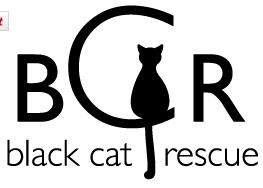 "Black Cat Rescue, Inc (Somerville, Massachusetts) logo is BCR Initials with black cat sitting in the ""C"""