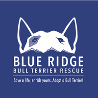 Blue Ridge Bull Terrier Club (Ashland, Virginia) dog logo