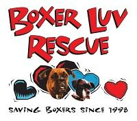 """Boxer Luv Rescue (Phoenix, Arizona) logo with hearts with boxers inside two of them and """"Saving boxers since 1998"""" tagline"""