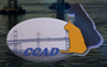 Chesapeake Cats and Dogs (Stevensville, Maryland) logo with CCAD in blue with Chesapeake Bay bridge and orange cat and black dog