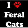 "Community Cat Coalition of Edmond (Edmond, Oklahoma) logo with ""I 'heart' (in shape of pawprint) Feral Cats"""