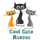 Cool Cats Rescue (Fountain Hills, Arizona) logo with 3 cool cats