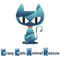 Crazy Cats Animal Rescue (Cincinnati, Ohio) logo