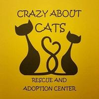 Crazy About Cats (Hot Springs, Arkansas) logo with 2 cats on yellow background