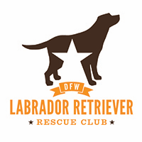 Dallas Fort Worth Lab Rescue (Plano, Texas) logo: Brown Lab dog with star on body