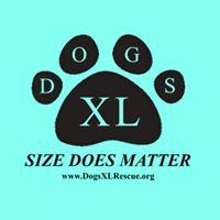 "Dogs XL Rescue (Baltimore, Maryland) logo blue background, black paw print with ""DOGS X"" in it & ""size does matter"""