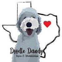Doodle Dandy Rescue (Garland, Texas) logo with doodle dog with outline of Texas and heart in background