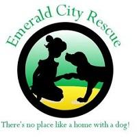 Emerald City Rescue Inc (Wantage, New Jersey) logo of little girl and dog in green/yellow circle