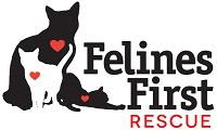 Felines First Rescue (Lafayette, Oregon) with black and white cats and red hearts