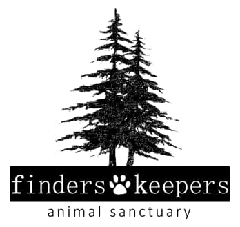 Finders Keepers Animal Sanctuary (Creedmoor, North Carolina) logo with two back pine trees above organization name