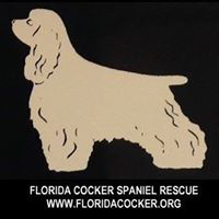 Florida Cocker Spaniel Rescue (Land O'Lakes, Florida) logo with cocker spaniel
