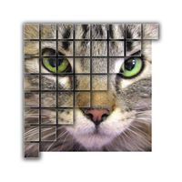 ForEverMeow (Palm Desert, California) logo of photo of cat and partial grid
