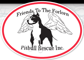 Friends to the Forlorn Pitbull Rescue, Inc. (Dallas, Georgia) logo has a pit bull dog with wings