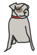 Friends with Four Paws (Oklahoma City, Oklahoma) logo has a grey dog with a red collar