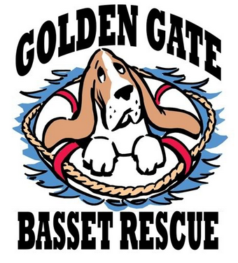 Golden Gate Bassett Rescue (Petaluma, California) logo has a basset hound in a life preserver