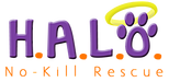Helping Animals Live and Overcome (Sebastian, Florida) logo of HALO with paw and no-kill rescue