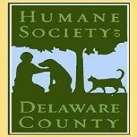 Humane Society of Delaware County (Delaware, Ohio) logo has a cat walking toward a person petting a dog sitting next to a tree