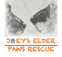 """Joey's Elder Paws Rescue (Pelham, New York) logo shows two old dog noses facing each other over the org name with a pawprint """"o"""""""