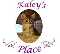 Kaley's Place (Fate, Texas) logo