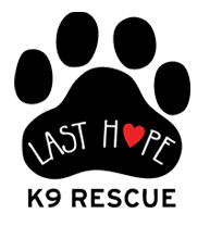 Last Hope K9 Rescue (Boston, Massachusetts) logo of paw, heart and Last Hope K9 Rescue text