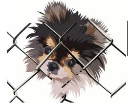 Left Behind K 9 Rescue logo