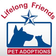 Lifelong Friends Pet Adoptions (Lago Vista, Texas) logo of cat & dog with a star above their heads