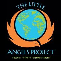 The Little Angels Project (NKLA)