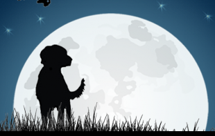 Lost Dogs of Wisconsin (Wales, Wisconsin) logo of dog silhouette, moon, grass, tree, Lost Dogs of Wisconsin, Never Give Up